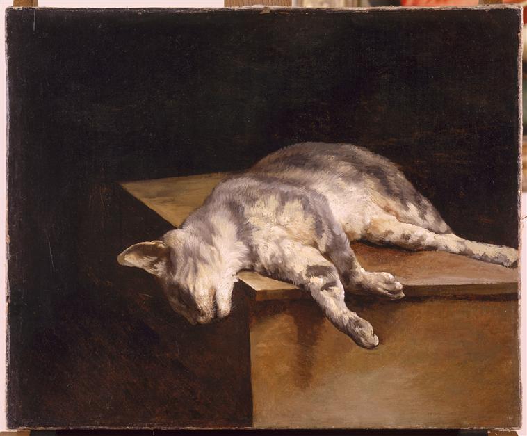 dead-cat-theodore-gericault