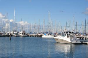Bay-city-marina-geelong