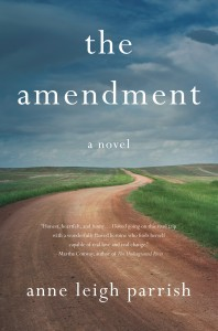 The Amendment cover as JPEG (002)