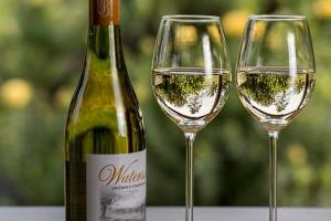 vino-hruska-styl