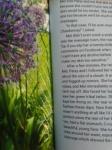 Z purple flower